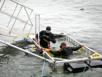 Photo of Cage Diving at the Farallon Islands, Ca.